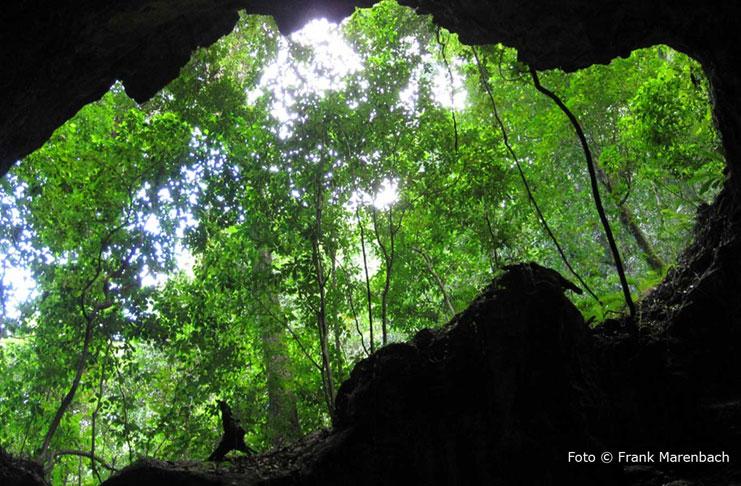 Höhle La Linea